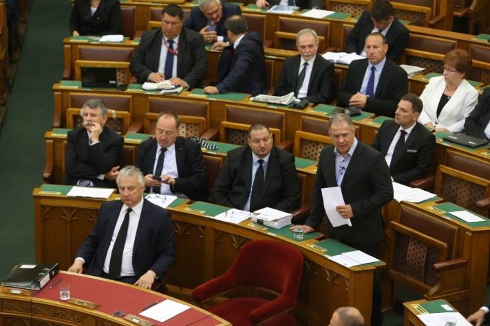 Kósa Lajos napirend előtti felszólalásában, pénteken.